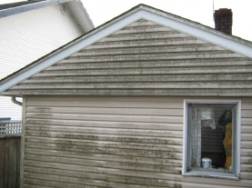 Exterior Siding Cleaning GRASS ROOTS SOLUTIONS